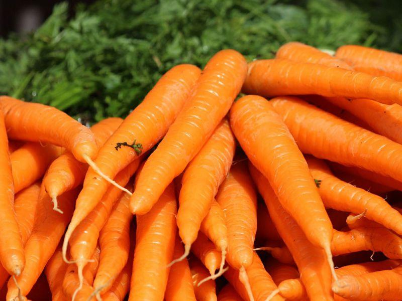 как-мой-сын-полюбил-морковь-и-перестал-бояться-брокколи1