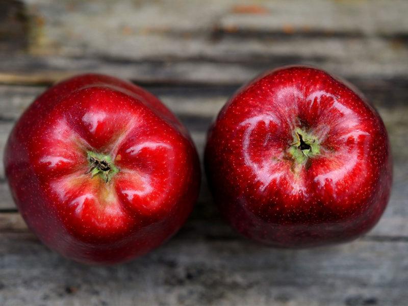 здоровое-и-сбалансированное-питание-cover