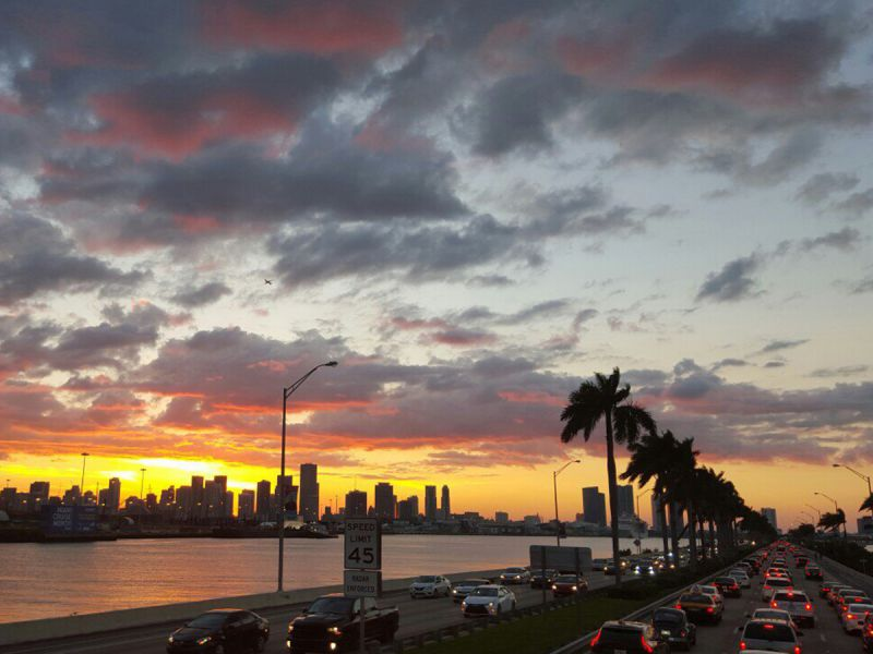 Маргарита Бочкова про удивительный и многогранный Маями 5